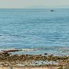 Cameo Shores_CdM-2838_39_40