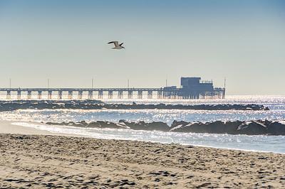 Newport Beach-5560_1_2