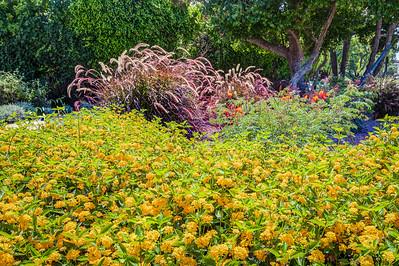 Begonia Park_Newport Beach-4507_8_9