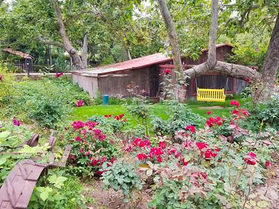 Rancho Las Lomas-173348
