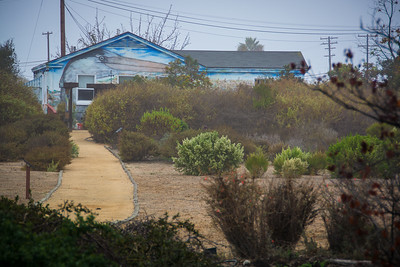 Seal Beach NWR-2920