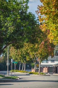 SB College Park West-3695