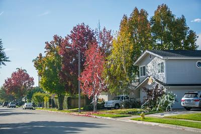 SB College Park West-3693