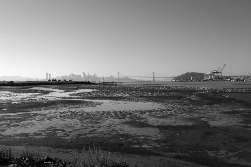 San Francisco from Oakland Middle Harbor