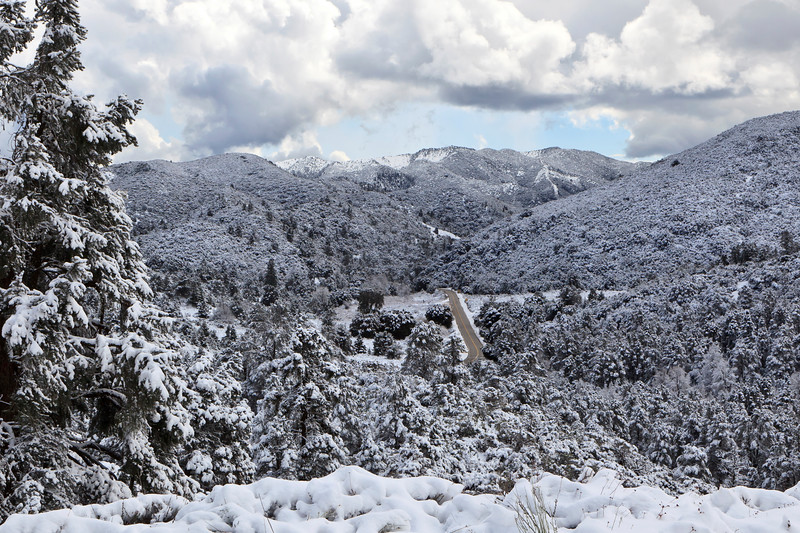 January - Los Padres National Forest following a winter snowstorm.