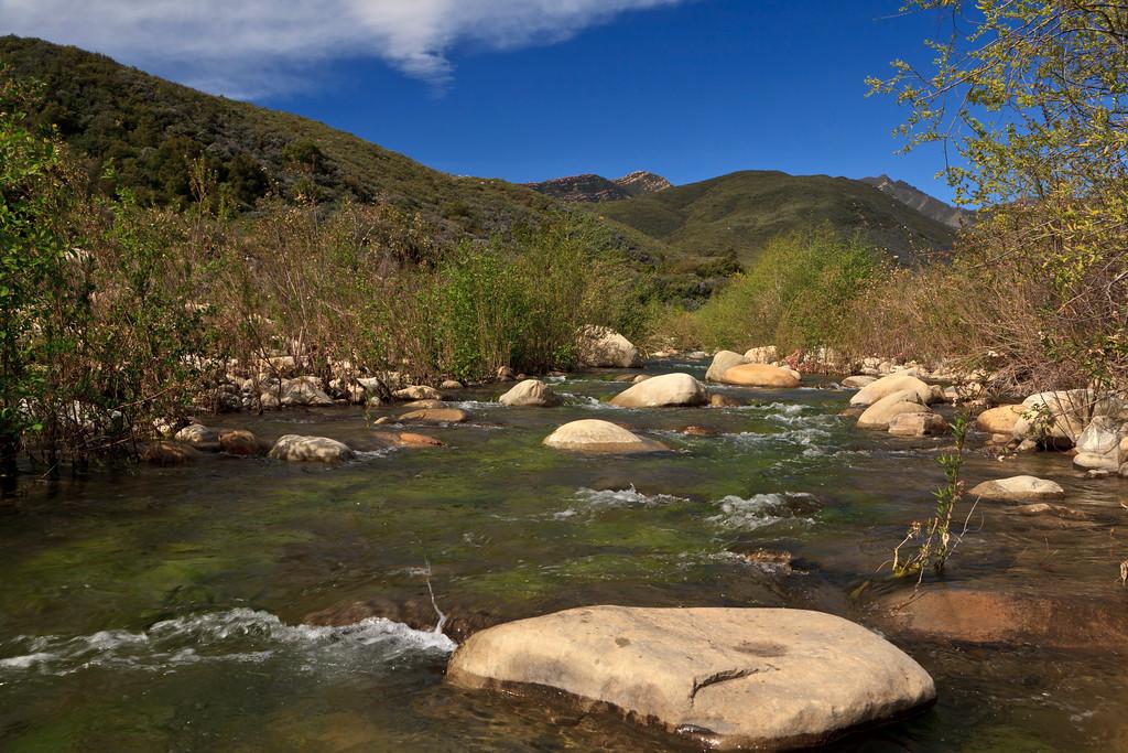 April - Matilija Creek