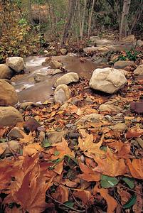 Thacher Creek