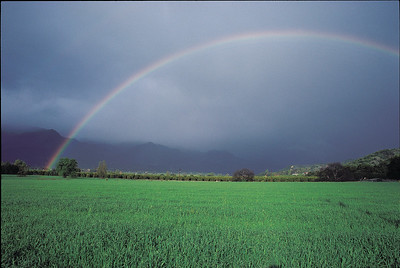 East end rainbow