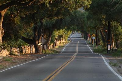 Carne Road