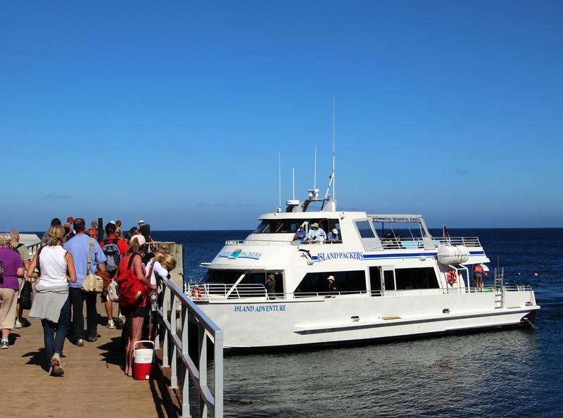 Santa Cruz Island, Channel Islands, Island Adventure, Returning Visitors