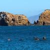 Santa Cruz Island, Channel Islands, Snorkelers in Scorpion Bay