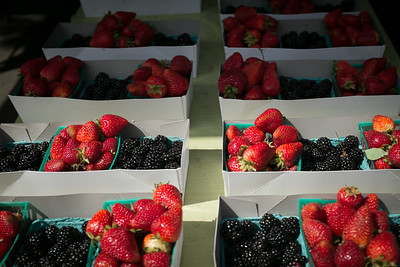 Berries, July 15, 2014 Petaluma Eastside Farmers' Market
