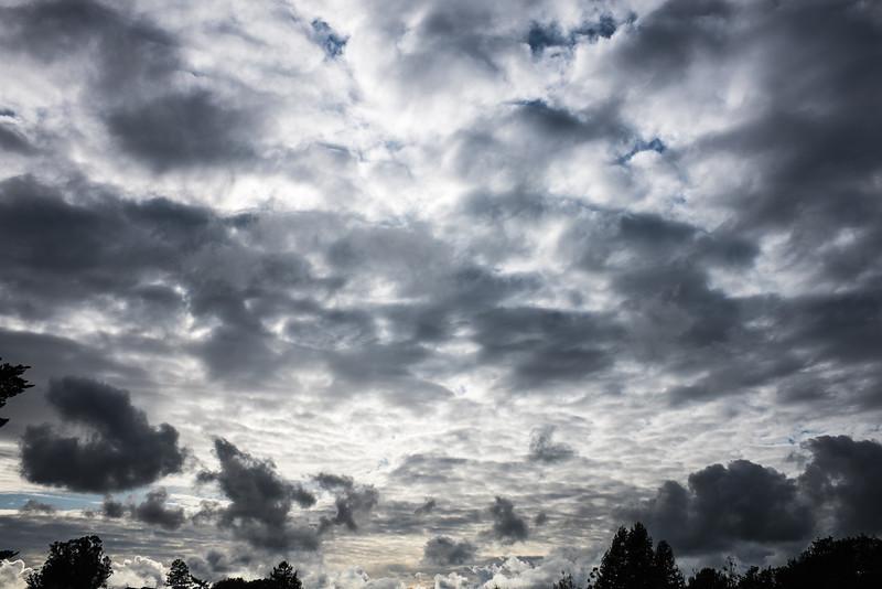Between storms, Petaluma, CA