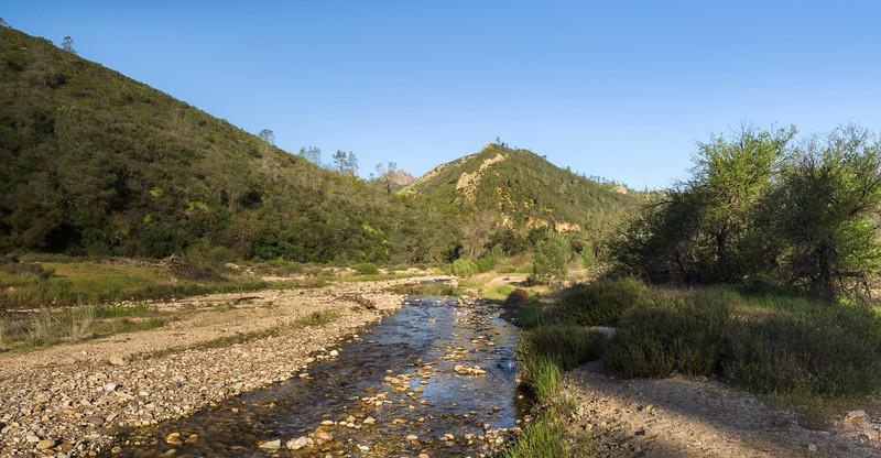 Creek in Spring Time