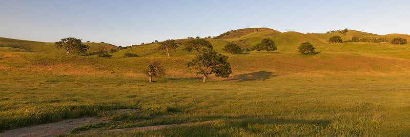 Last Rays of Sun on Rolling Hills