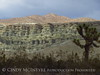 Rainbow Basin Natural Area, Barstow CA (19)