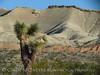 Rainbow Basin Natural Area, Barstow CA (3)