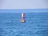 Buoy with seals
