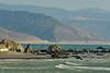 Cape Mendocino CA (3)