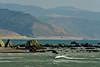 Cape Mendocino CA (4)