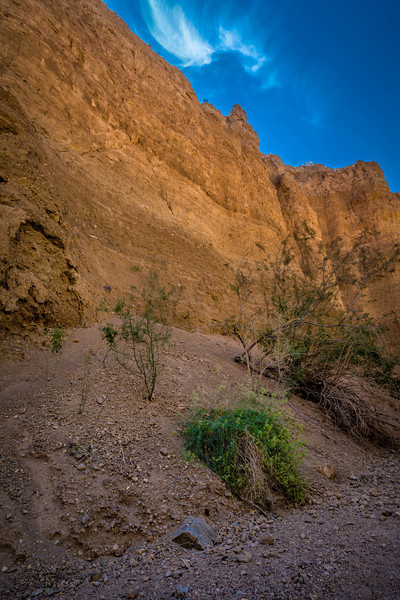 Offshoot - Red Canyon, CA, USA