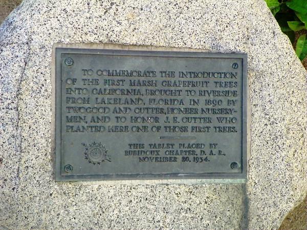 Plaque commemorating introduction of Marsh Grapefruit in Riverside in 1890.