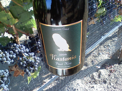 First winery: Kastania. Great introduction to the world of wine making. Harvest should happen in about a week from now.