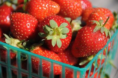 Organic strawberries...yummmmmm!