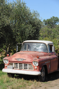 Out in the vineyard...love old vintage trucks/cars...looks like they have personality.