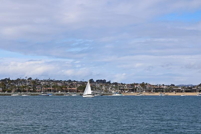 Marina and Sailboats