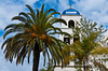 The bell tower with palms at the Immaculate Conception Church in historic Old Town, San Diego, California, USA.