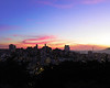San Francisco Cityscape 11