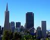 San Francisco Cityscape 7