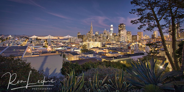City By The Bay At Night from Russian Hill