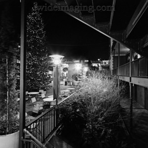 Chirardelli square Christmas Tree, December 30, 2010.