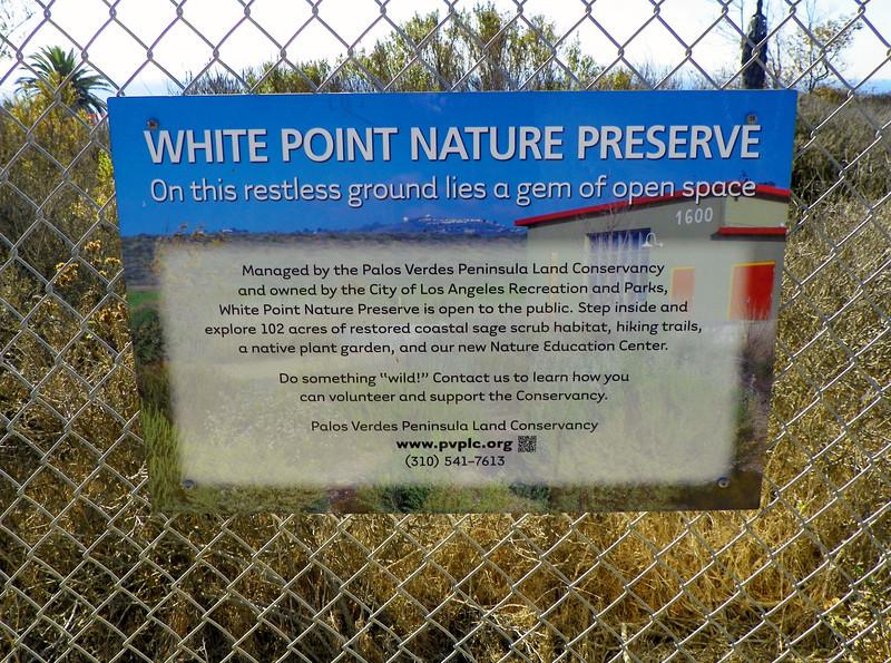 White Point - 1