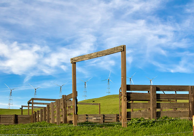 Pasture at Altamont Pass