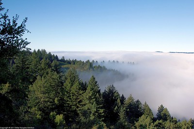 Santa Cruz Mountains at dawn