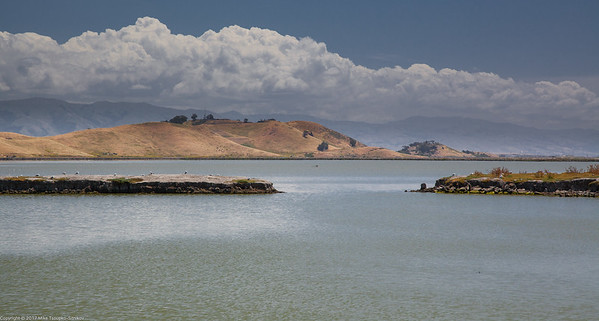 SF Bay Wildlife Refuge