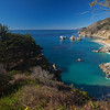 view from Julia Pfeiffer Burns State Park