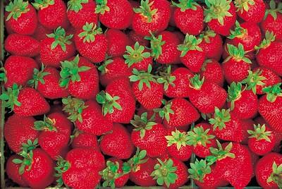 Strwberries