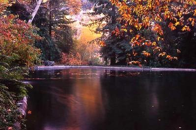 Reflection pond at Thomas Aquinas