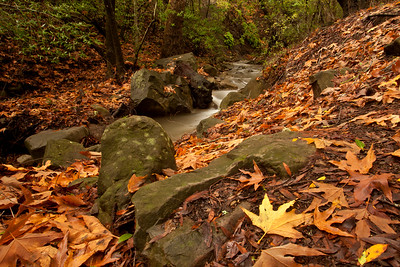 Stream alongside trail leading to falls, Nojoqui Falls Park, Nojoqui Falls Park