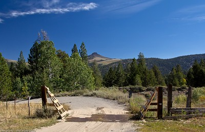 Cattle gate at the trailhead
