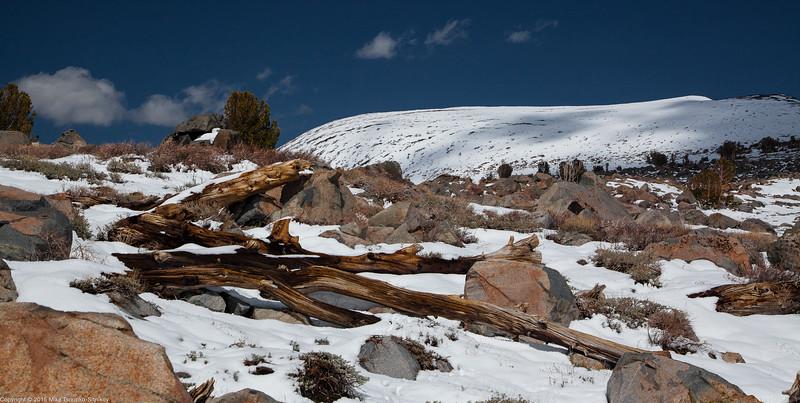Round Top and Winnemucca Lake 8106