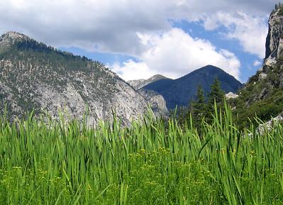 Zumwalt Meadows in Kings Canyon
