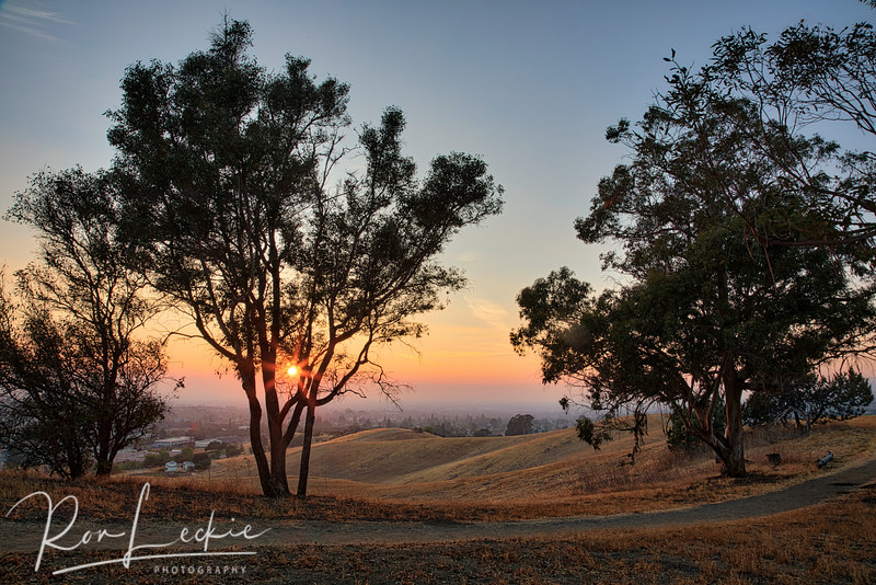 Silicon Valley (Santa Clara Valley): East Bay Foothills at Sunset