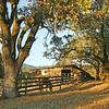 corral at Beltane Ranch