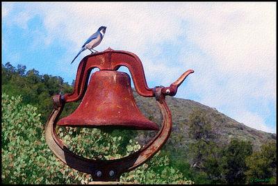 Bluebird and Bell