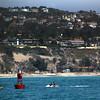 Dana Point, California, Water Fun with Harbor Seals